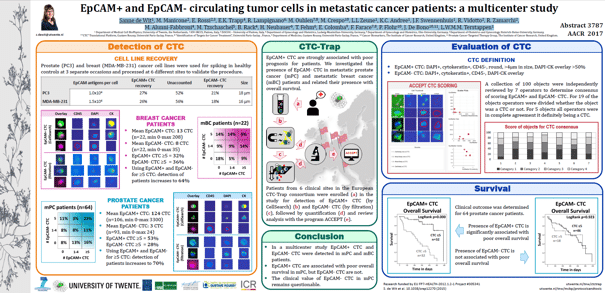 EpCAM+ and EpCAM-circulating tumor cells in metastatic cancer patients: a multicenter study