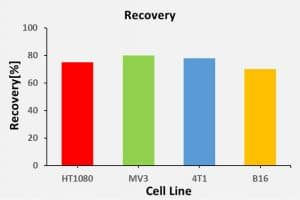 Recovery of CTC in mouse