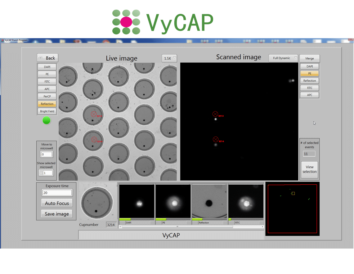 Single cell analysis of CTC, fetal cells, organoids